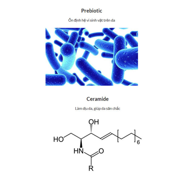 7300 Probiotic Nutrient Moisturizer Slide 5 08062020.jpg