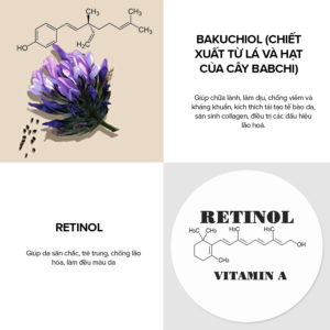 8015 Clinical 0 3 Retinol 2 Bakuchiol Treatment Slide 5 08062020.jpg